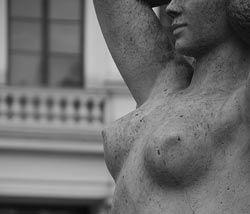 brystvorter
